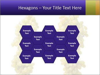 0000061920 PowerPoint Templates - Slide 44