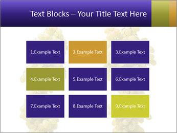 0000061920 PowerPoint Templates - Slide 68