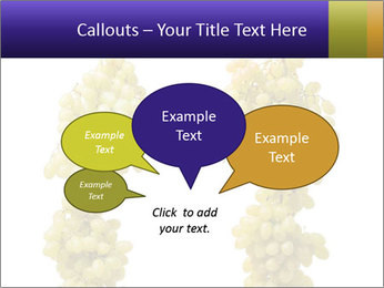 0000061920 PowerPoint Templates - Slide 73