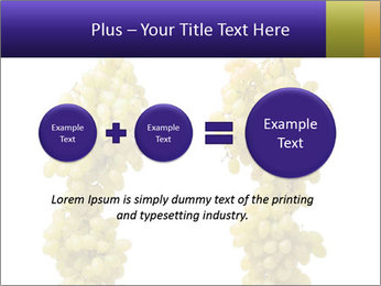 0000061920 PowerPoint Template - Slide 75
