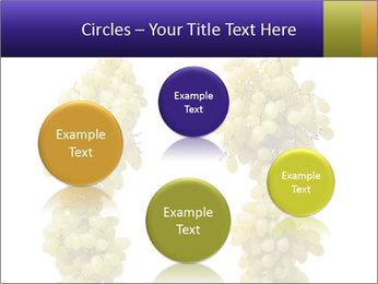 0000061920 PowerPoint Templates - Slide 77