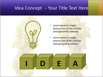 0000061920 PowerPoint Template - Slide 80