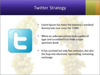 0000061920 PowerPoint Template - Slide 9