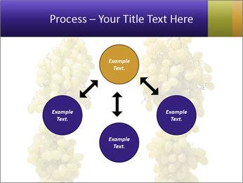 0000061920 PowerPoint Templates - Slide 91