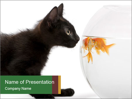 0000061924 PowerPoint Templates