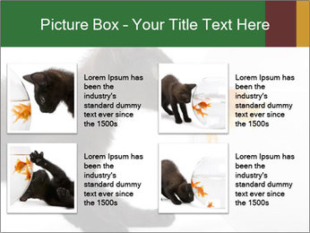 0000061924 PowerPoint Templates - Slide 14