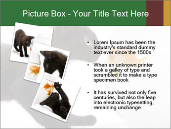 0000061924 PowerPoint Templates - Slide 17