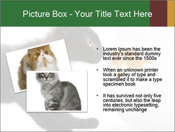 0000061924 PowerPoint Templates - Slide 20