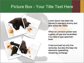 0000061924 PowerPoint Templates - Slide 23