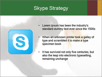 0000061924 PowerPoint Templates - Slide 8
