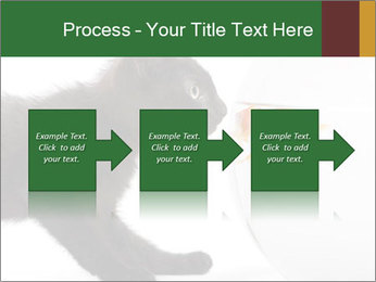 0000061924 PowerPoint Templates - Slide 88