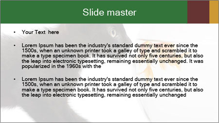 0000061924 PowerPoint Template - Slide 2