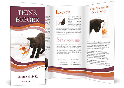 0000061925 Brochure Template