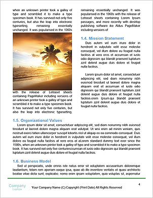 0000061930 Word Template - Page 4