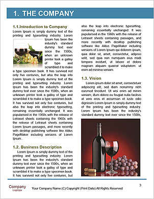 0000061932 Word Template - Page 3