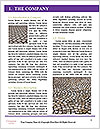 0000061940 Word Templates - Page 3