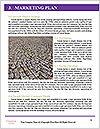 0000061940 Word Templates - Page 8