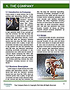 0000061942 Word Template - Page 3