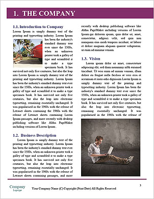 0000061954 Word Template - Page 3