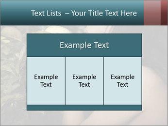 0000061961 PowerPoint Templates - Slide 59