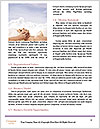 0000061970 Word Template - Page 4