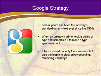 0000061972 PowerPoint Template - Slide 10