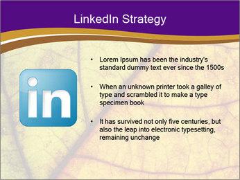 0000061972 PowerPoint Template - Slide 12
