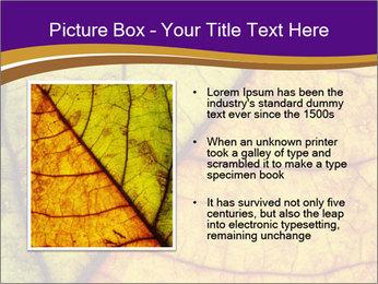 0000061972 PowerPoint Template - Slide 13