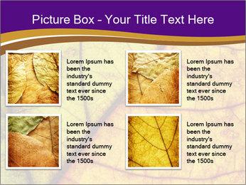 0000061972 PowerPoint Template - Slide 14