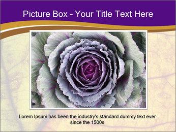0000061972 PowerPoint Template - Slide 15