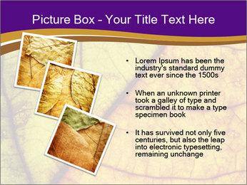 0000061972 PowerPoint Template - Slide 17