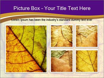 0000061972 PowerPoint Template - Slide 19