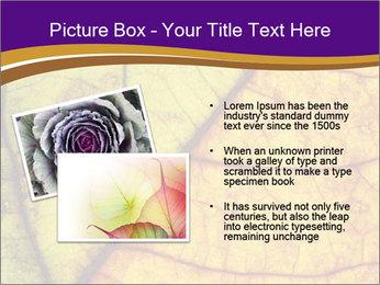 0000061972 PowerPoint Template - Slide 20