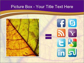 0000061972 PowerPoint Template - Slide 21