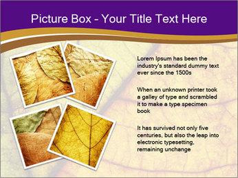 0000061972 PowerPoint Template - Slide 23