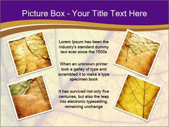 0000061972 PowerPoint Template - Slide 24