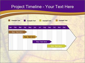 0000061972 PowerPoint Template - Slide 25