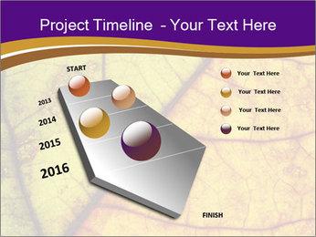 0000061972 PowerPoint Template - Slide 26