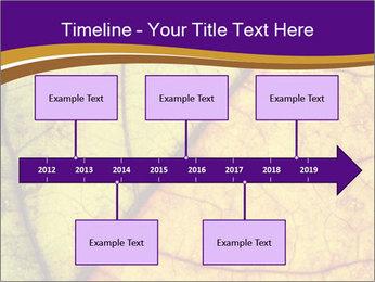 0000061972 PowerPoint Template - Slide 28