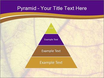 0000061972 PowerPoint Template - Slide 30