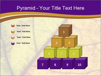0000061972 PowerPoint Template - Slide 31