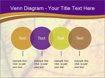 0000061972 PowerPoint Template - Slide 32