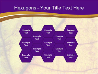 0000061972 PowerPoint Template - Slide 44