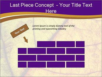 0000061972 PowerPoint Template - Slide 46