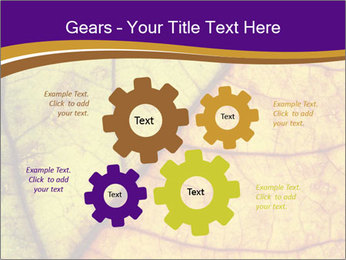 0000061972 PowerPoint Template - Slide 47
