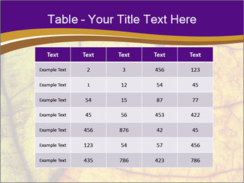 0000061972 PowerPoint Template - Slide 55