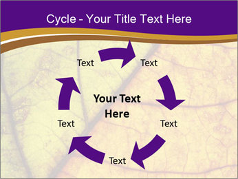 0000061972 PowerPoint Template - Slide 62