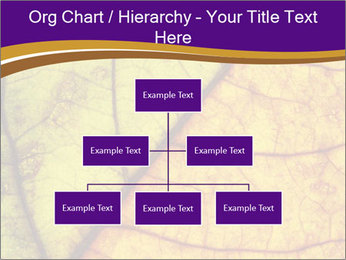 0000061972 PowerPoint Template - Slide 66
