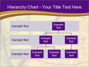 0000061972 PowerPoint Template - Slide 67