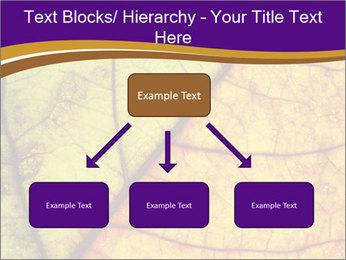 0000061972 PowerPoint Template - Slide 69